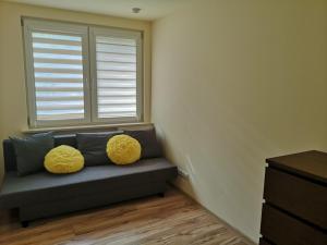 Apartament Morze i Las