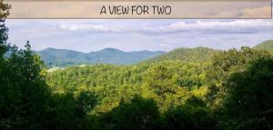 A View for Two - Hotel - Townsend