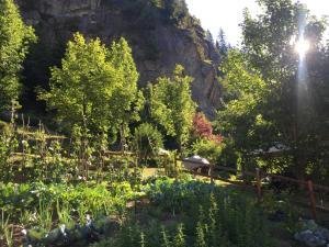 Appartamento Casa Weisstor con giardino e orti - Hotel - Macugnaga
