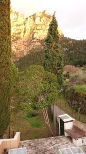 Ibix Achaia Greece