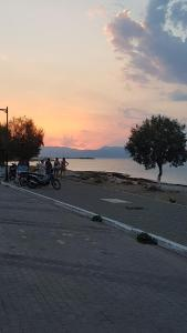 Argo Studios Agistri Greece