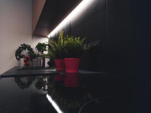 Apartamenty Dworcowa 45