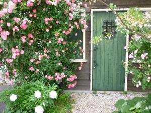 Auberges de jeunesse - Hida Takayama Guesthouse Gekka