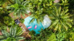 . Monkey Lodge Panama