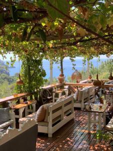 Turan Hill Lounge, Фаралия