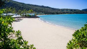 InterContinental Hayman Island Resort (8 of 135)