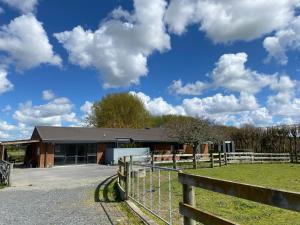 Unique Equestrian Lifestyle - Accommodation - Tamahere