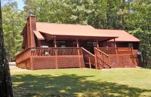 Bearadise Retreat Cabin - Ellijay