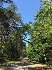 Ustronie Leśne 2