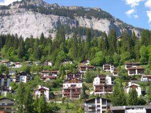 Panorama A23 Fitzi - Ferienwohnung für 1-2 Personen