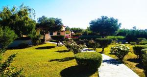 Villa Mirothea Alonissos Alonissos Greece