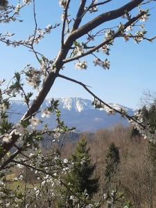 Chałupa z widokiem w górach