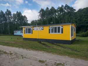 Domek żółtycałoroczny