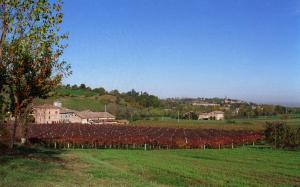 Agriturismo San Polo - Vignola