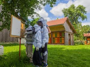 Beekeeping Kojek