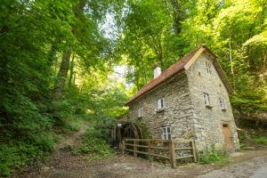 Old mill Adventure Farm