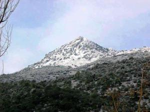 Cabañas Jimera de Líbar, Kúriák  Jimera de Líbar - big - 18