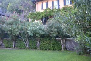 Accommodation in Carate Urio