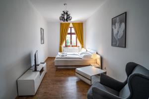 Apartmany Pisek - Apartment - Písek
