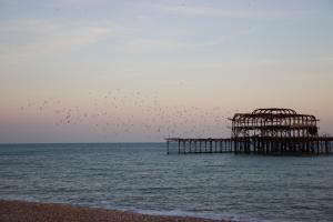 My Brighton (6 of 36)