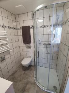 Gasthof Schwanen, Мини-гостиницы  Radelfingen - big - 5