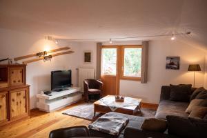Singlinaz - Apartment - Vissoie