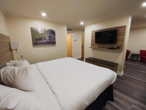 Hôtel & Suites Le Dauphin Québec - Hotel - Quebec City