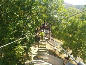 Complejo Turístico Las Cañadas, Casas de Campo y Bungalows, Villaggi turistici  Baños de Montemayor - big - 85