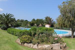 Playa del Oro, Holiday parks  Favone - big - 39