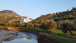Casa Olea (6 of 48)