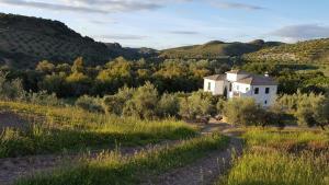 Casa Olea (1 of 48)