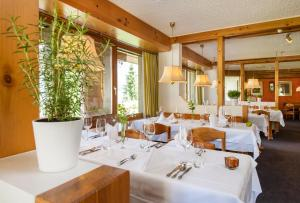Hotel Mira Val, Hotely  Flims - big - 30