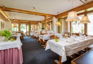 Hotel Mira Val, Hotels  Flims - big - 29