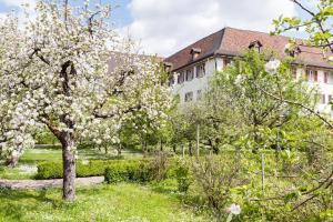 Kloster Dornach / Basel - Hotel - Dornach