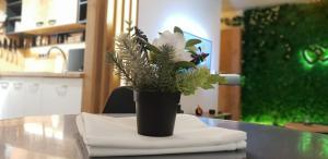 Apartman ZELENA BAJKA- Bjelašnica - Hotel
