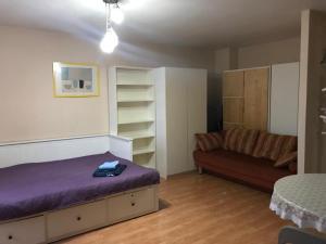 Business Brusnika Apartments Sokol 4