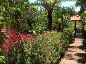 Jacaranda Park Holiday Cottages, Horské chaty  Burnt Pine - big - 8