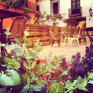TOC Hostel Sevilla (20 of 33)