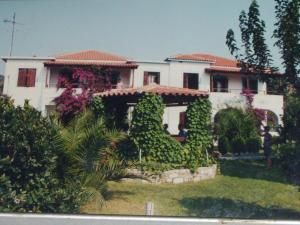 Hostels e Albergues - Hotel Elytis