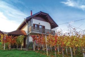 Vineyard house Bahor