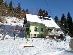 Apartment Žvan