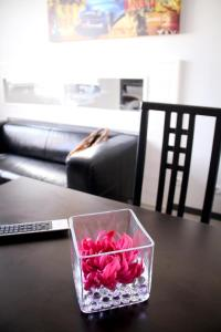 Park Wilson Airport, Residence  Colomiers - big - 5