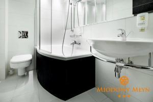 Hotel Miodowy Młyn
