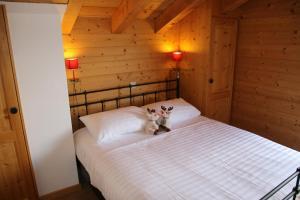 Wanderoo MOUNTAIN & COSY - chalet 10 pers - Hotel - Veysonnaz