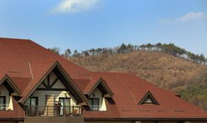 Intercontinental Alpensia Pyeongchang Resort - Hotel - Pyeongchang