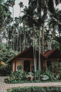 Munjoh Ocean Resort (30 of 95)