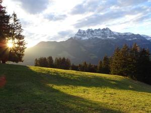 Chalet Chanso - Hotel - Morgins