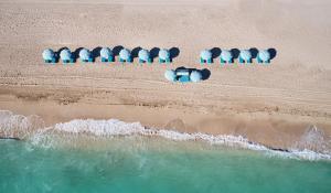 Carillon Miami Wellness Resort (17 of 61)