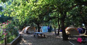 Location gîte, chambres d'hotes Balanea dans le département Corse du Sud 2a