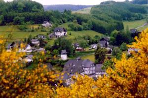 Ferienwohnung Bäumner, Apartmanok  Bad Berleburg - big - 66